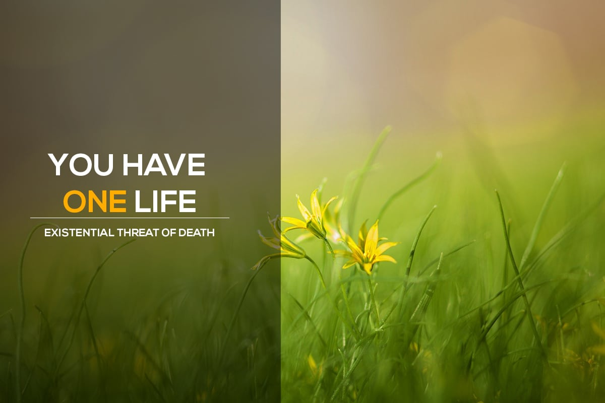You-have-one-life,-Live-it-existential-threat-of-death rtistic blog